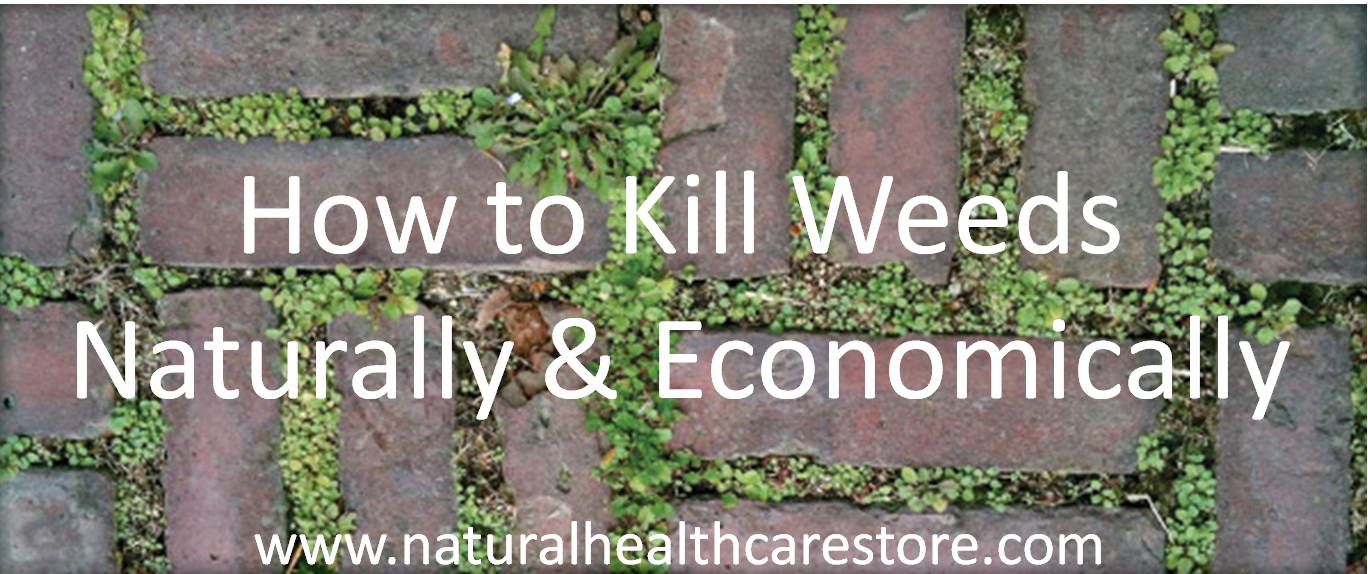 What Is The Best Way To Kill Weeds Naturally