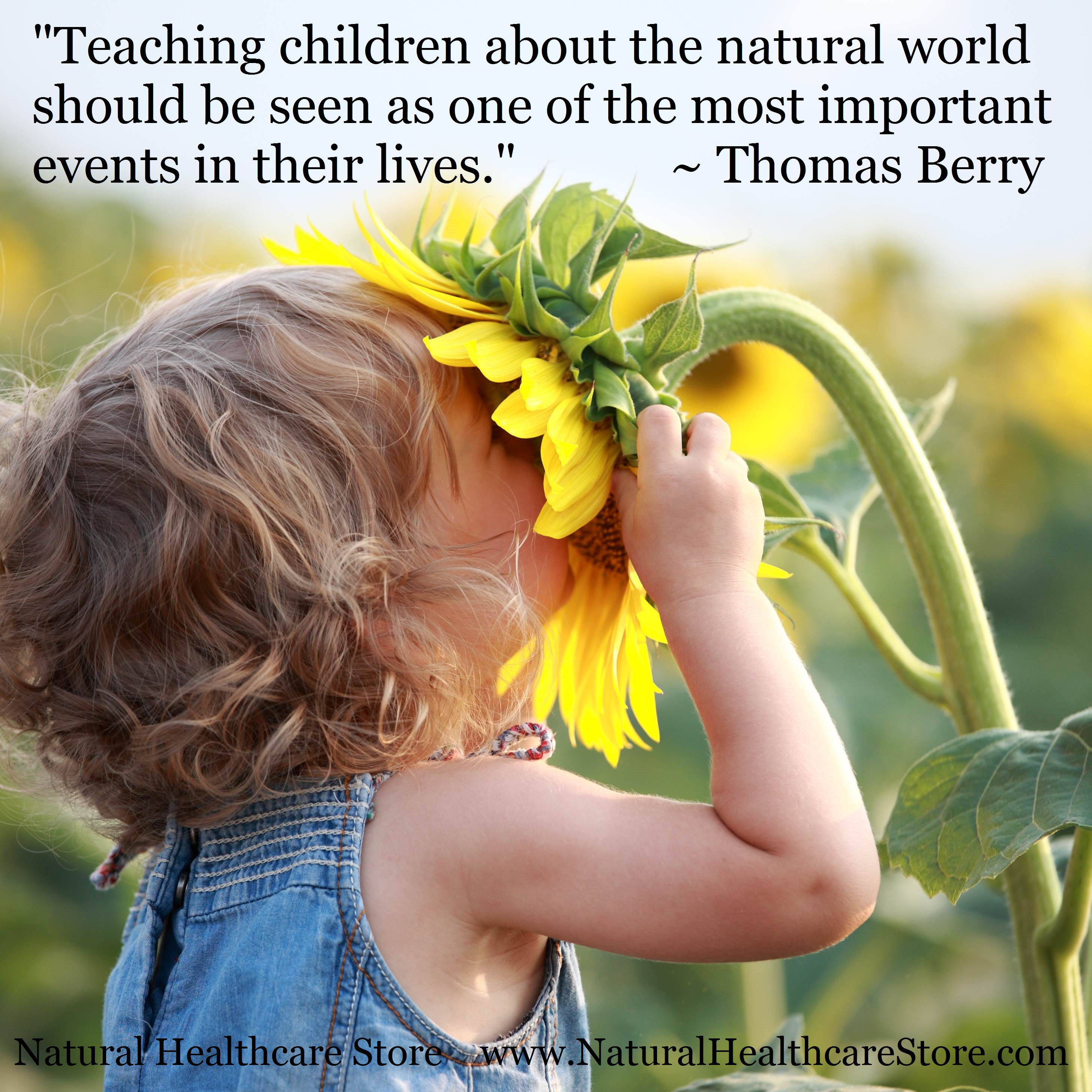 Quotes About Teaching Children Natural Child Care Quotes  Collectionnatural Healthcare Store
